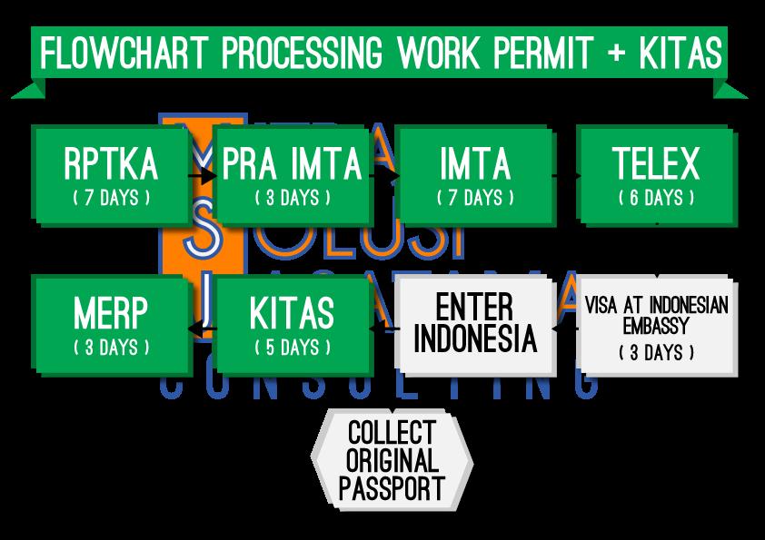 Jenis kitas indonesia